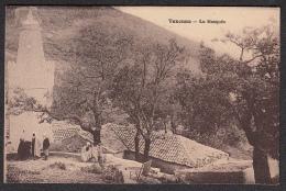 CPA -  ALGERIE,  TEXENNA, La Mosquee - Autres Villes