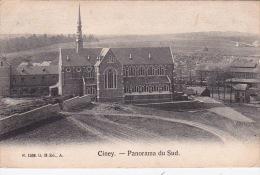 Ciney 84: Panorama Du Sud 1906 - Ciney