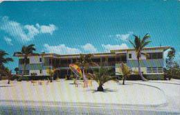 Florida Venice Palm Lined Boulevard Business Area