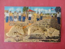 Real Sponge  Added -- Sponge Exchange Tarpon Springs  Fl Linen----  -------  Ref 991 - Cartes Postales