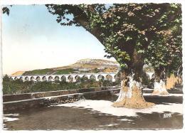 Bédarieux -Le Viaduc (Réf.4732) - Bedarieux