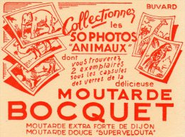 - BUVARD Moutarde BOCQUET - 219 - Mostard