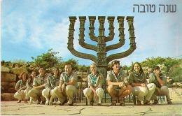13 / 6 / 96  -  CARTE D' UN GROUPE  -CPSM - Israel