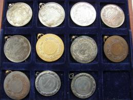 Belgium  11 Old Medals -Belgique 11  Medailles  1899-1910  Chevaux - Bovine - Professionnels / De Société