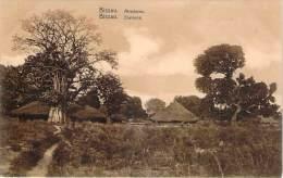 Guinée - Bissau - Environs - Guinea-Bissau