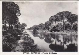 Ravenna - Pineta FG - Ravenna