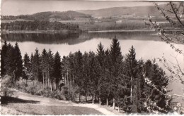 Cpsm Lac De Paladru-charavines, Le Bois D´amour   (20.45) - France