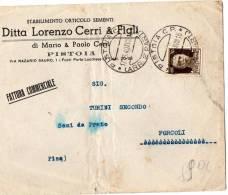 BUSTA POSTALE-PUBBLICITARIA DITTA LORENZO CERRI-PISTOIA-STABILIMENT O ORTICOLO SEMENTI-17-8-1940 - Marcophilie