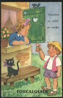 Carte Postale Système - Derrière Ce Volet Se Cache FORCALQUIER  Jean Brian - Edition D'Art André Grenoble - écrite - Postcards
