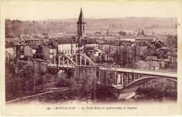 CP, 82, Montauban, Le Pont-Neuf Et Panorama De Sapiac, Voyagé - Montauban