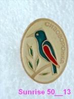 Animals: Bird Roller - Corabias Garrulus / Soviet Badge _35_an2224 - Animals