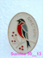 Animals: Bird Bullfinch - Pyrrhula - Robin / Soviet Badge _35_an2217 - Animals