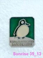 Animals: Bird Waxbird - Bombucilla - Waxwing Zoo / Old Soviet Badge_035_an2241 - Animals