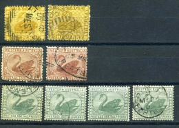 Small Accumulation Of Western Australia´ Swans,used Mainly - 1854-1912 Western Australia