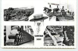 JERZ DE LA FRONTERA  - Sanderman Vineyards & Bodegas.carte Multivues. - Cádiz