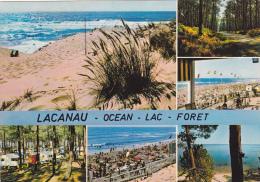 LACANAU-OCEAN 33, MULTI-VUES OCEAN, LAC, FORÊT - Andere Gemeenten