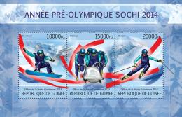 GUINEA 2013 - Pre-Olympics Sochi, Snowboard - YT 6676-8; CV = 22 € - Skateboard