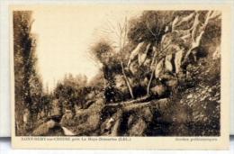 Cpa 37 Saint Rémy Sur Creuse , Pres La Haye -Descartes  - Grottes Préhistoriques  - - Unclassified