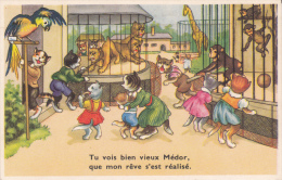 CPSM CHAT CHATS HABILLES AU ZOO PERROQUET GIRAFE SINGE LION REVE REALISE VIEUX MEDOR - Cats