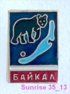 Animals: Bear - Bruin - Baboon - Bearskin Jobber National Park Baikal / Old Soviet Badge_035_an2203 - Tiere
