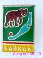 Animals: Bear - Bruin - Baboon - Bearskin Jobber National Park Baikal / Old Soviet Badge_035_an2230 - Animals