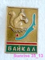 Animals: Squirrel - Bun National Park Baikal / Old Soviet Badge_035_an2205 - Animals