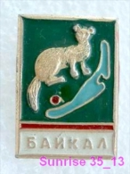 Animals: Sable - Zibeline - Sobol National Park Baikal / Old Soviet Badge_035_an2236 - Animals