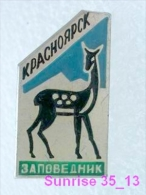 Animals: Roe - Roe Deer - Capreolus - National Park Krasnoyarsk / Old Soviet Badge_035_an2208 - Animals