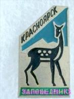 Animals: Roe - Roe Deer - Capreolus - National Park Krasnoyarsk / Old Soviet Badge_035_an2228 - Animals