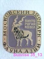 Animals: Markhor - Markhoor - Capra Falconeri - Zoo Moscow / Old Soviet Badge_035_an2245 - Animals