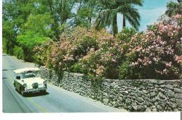 Surrey Top Taxi, Bermuda - The Most Popular Way To Go Sightseeing In Bermuda - Taxi & Carrozzelle