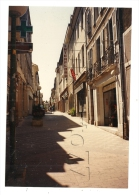 """Orthez (64) : Photo Projet CP GF Le Magasin """"Interflora"""" Et Perspective De La Rue Piétonne En 1990 (animé) RARE. - Orthez"""
