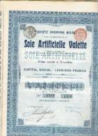 Soie Artificielle Valette - 1905 - Textile