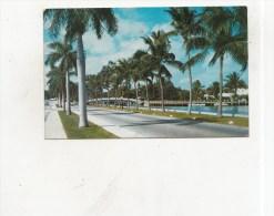 BT15589  Las Olas Boulevard In Fort Lauderdale    2 Scans - Fort Lauderdale