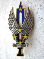 INSIGNE ARMEE DE L�AIR ESCADRILLE DE LIAISON FFA FORCES FRANCAISES EN ALLEMAGNE 1� ARMEE Y.DELSART