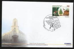 268  URUGUAY  2012   F:D:C:  -100 Años - Institucion De Confraternidad Vasca Euskal Erría 1912 - 2012 - Uruguay