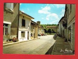 LES SALLES LAVAUGUYON ( Haute-Vienne) Rue Principale... - Frankrijk