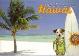 Postal Felicitacion Nöel Navidad Christmas Nueva Lae Pancho Hawai Carte Postale Postcard - Cristianismo