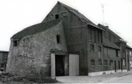 DENDERBELLE Bij Lebbeke (O.Vl.) - Molen/moulin - Ingekorte Romp Van De Fonteintjesmolen In 1981 - MAXIKAART - Lebbeke