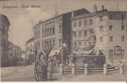 Treviso - Conegliano - Corso Cavour - Treviso