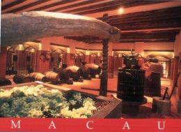 (933) Macao - Macau - Wine Museum - Cartes Postales