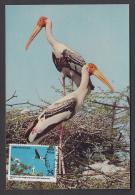 INDIA  1976  Bird Sactuary Bharatpur Aximum Card  #  48697  Indien Inde - Cranes And Other Gruiformes