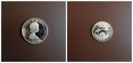 2 Dollars Plata Proof Bahamas 1973 - Bahamas