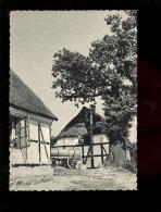KAPPELN SCHLEI Bauernhäuser - Kappeln / Schlei