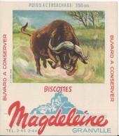 BUVARD - BISCOTTES MAGDELEINE Granville - N° 11 Buffle - Zwieback