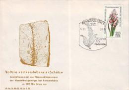 DDR Ganzsache Stempel Remkersleben Aus Jahr 1978 - Covers - Used