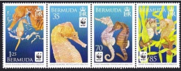 Bermuda - Seahorse, WWF, Set Of 4 Stamps, MNH - W.W.F.