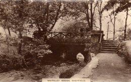 CPA  Photo ?  ANGLETERRE---WHITELEY WOODS SCHEFFIELD---petite Animation---1921 - Sheffield