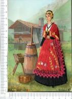 LA SAVOIE - Savoyarde En Costume Régional  -  Carte Brodée - Corsage Brodé, Jupe En Tissu Et Dentelle - Rhône-Alpes