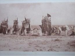 1910 CPA Sud Oranais Une Smala Algérie Ex Colonie Française édition J. Geiser Photo Alger - Oran
